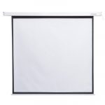 4world Electric screen wall/ ceiling with 152X152 1: 1 white matte switch